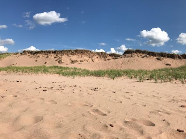 Sand_July30_2018